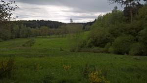 paysage(1)